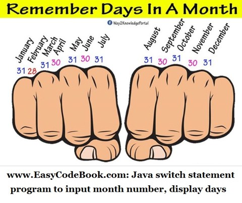 Java switch Statement Month Days Program
